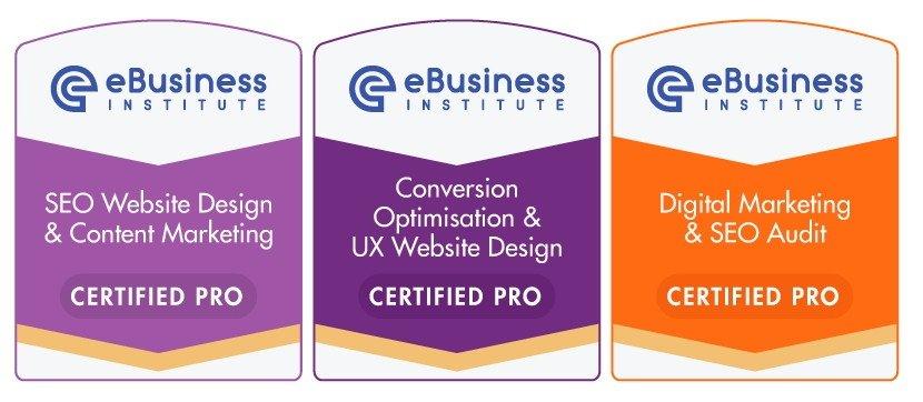 ebusiness institute digital marketing certifications